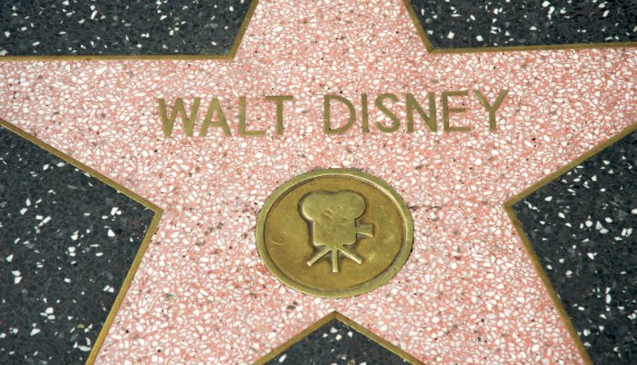 Image of Walt Disney Hollywood Star