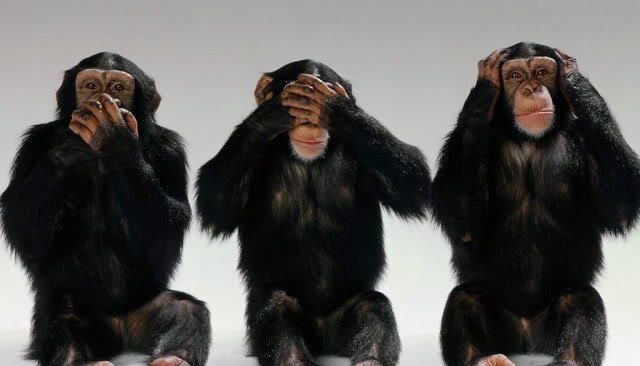 Speak no evil, see no evil, hear no evil,